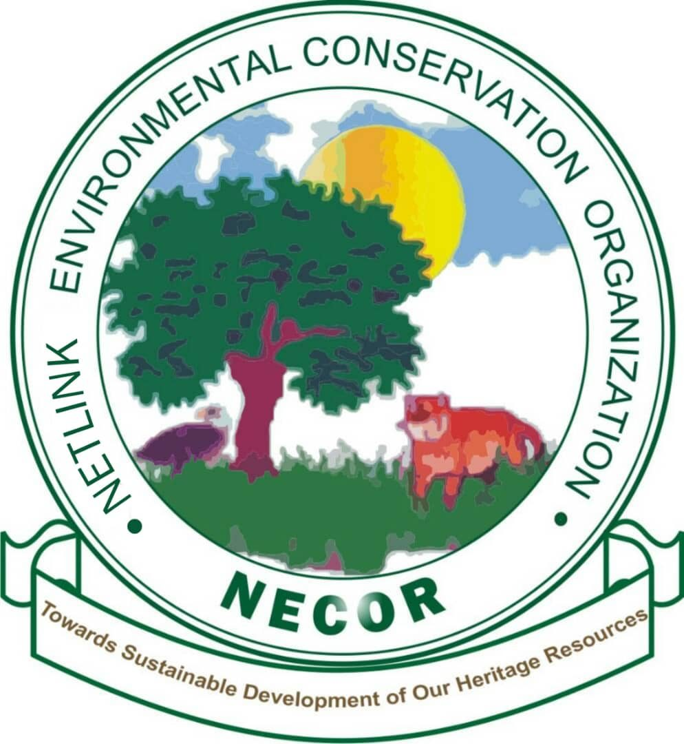new-necor-logo (1).jpeg